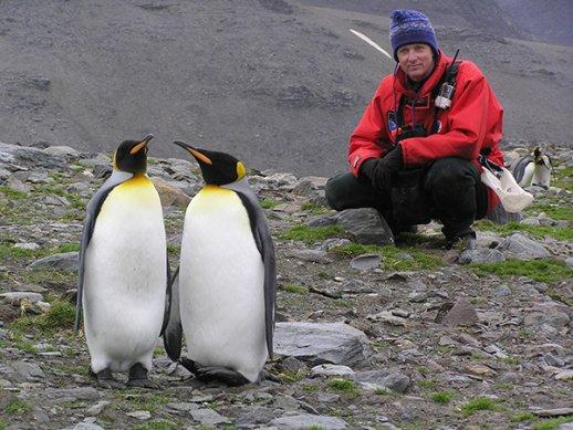 Brian-Keating-King-Penguins