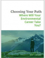 Choosing Your Path eBook