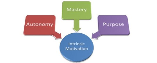 Intrinsic-motivators-autonomy-mastery-purpose