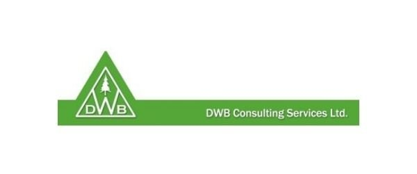 interview with funmilayo atilola at dwb consulting