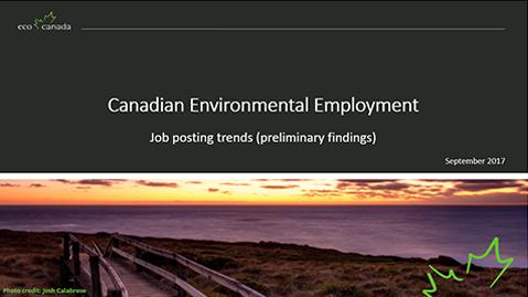 Job Posting Trends