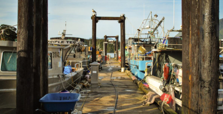 reformed fisheries and aquaculture act canada