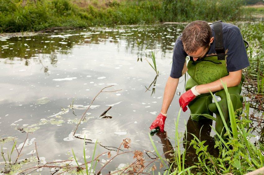 Environmental Scientist  Eco Canada