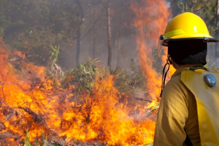 A forest firefighter looking on at a wildfire